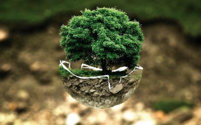 Greening our church