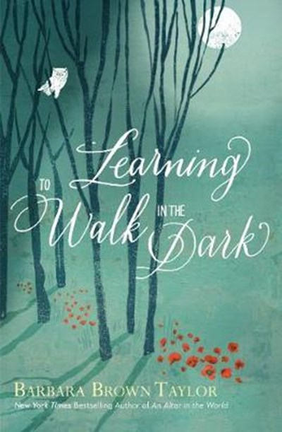Book Club – Learning to Walk in the Dark